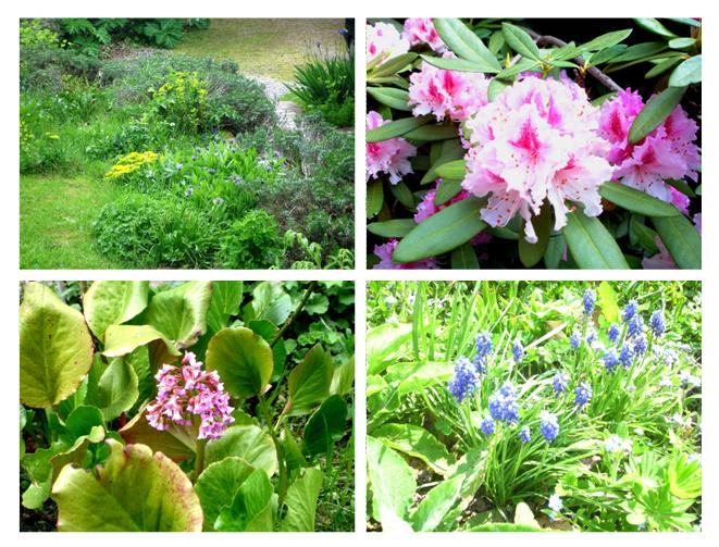 jardin 2013